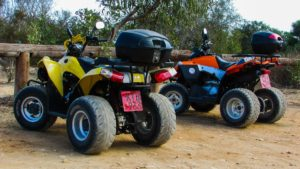 four wheel driving tassie