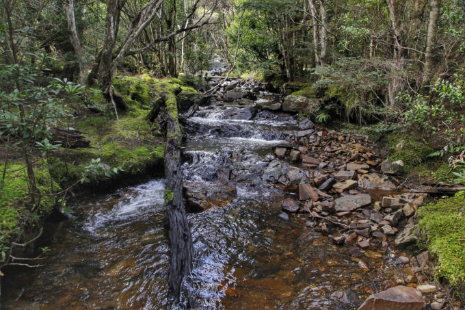 Siamese Water Race 4WD Track St Helens Tasmania