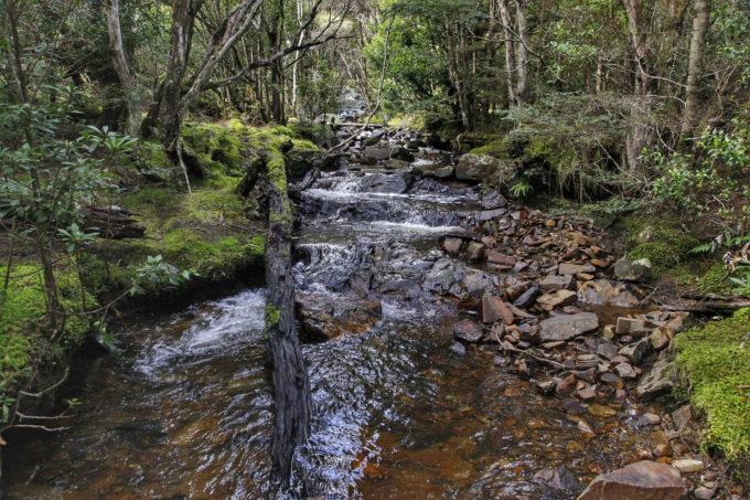 Siamese Water Race 4WD Track St Helens Tasmania